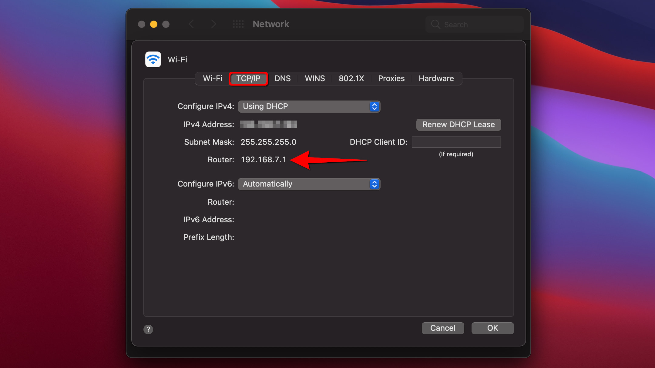 macOS Big Sur Get Router Address