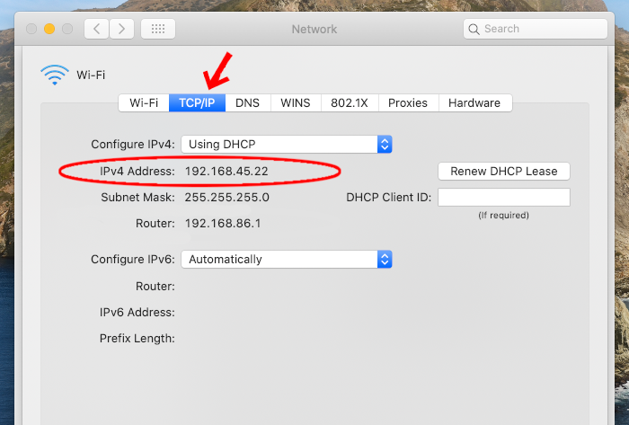 Where to find your IP on a Mac