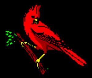 Redbird Internet Services